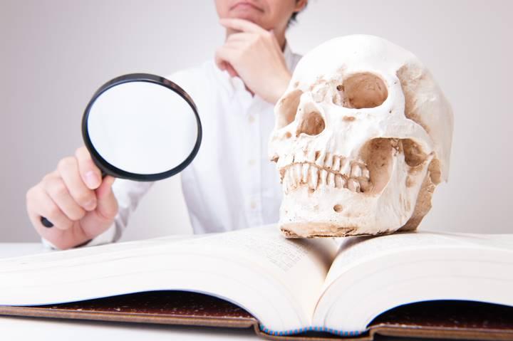 理学療法士が骸骨の骨模型と文献を調べている画像